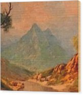 View On Blue Tip Mountain H A Wood Print