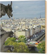 View On Paris City Wood Print