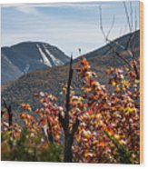 View On The Way Up Mt. Jo, Adirondacks Wood Print