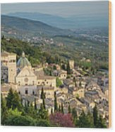 View Over Assisi Wood Print