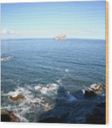 View Over Bass Rock Wood Print