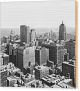View Over Downtown Chicago Wood Print