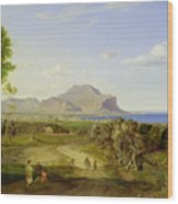 View Over Palermo Wood Print