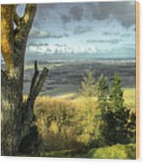 View Over Redcar Wood Print