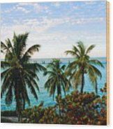 View To The 7 Mile Bridge Wood Print
