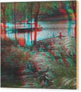 View To The Cove - Use Red-cyan 3d Glasses Wood Print