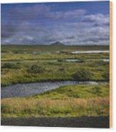 View Towards Lake Myvatn Iceland Wood Print