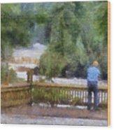 Viewing Tahquamenon Lower Falls Upper Peninsula Michigan Pa Wood Print