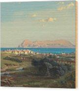 Views Of Algeciras On The Rock Of Gibraltar Wood Print