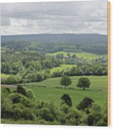 View Of The Surrey Hills From Newlands Corner Wood Print