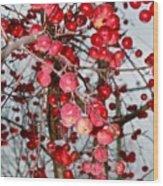 Vignettes - Apples Cider Wood Print