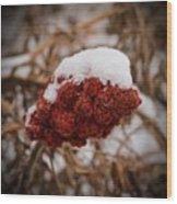 Vignettes - First Snow 1 Wood Print