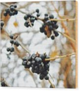 Vignettes - Indigo Winter Berries Wood Print