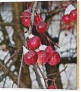 Vignettes - Snow Fruit Wood Print