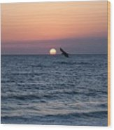 Vilano Beach At Sunrise Wood Print