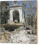 Villa Borghese River Wood Print