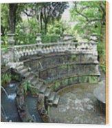 Villa Lante Garden Wood Print