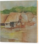 Village Huts On Rockside Wood Print