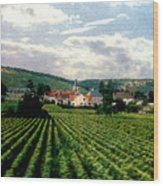 Village In The Vineyards Of France Wood Print