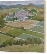Village In Tuscany Wood Print
