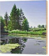 Village Pond At Tissington Wood Print