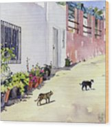 Village Street With Cats In Hortichuelas Wood Print