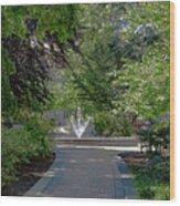 Villanova Fountain Wood Print