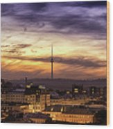 Vilnius Tv Tower Wood Print