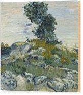 Vincent Van Gogh, The Rocks Wood Print