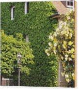 Vine Cover Wood Print