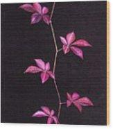 Luster Wood Print by Ekta Gupta