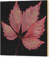 Vine Leaf Wood Print