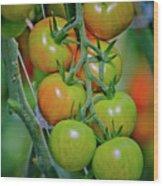 Vine Ripened Rainbows Wood Print