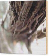 Vines 006 Wood Print
