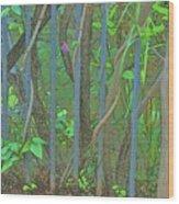 Vines Abstract IIi Wood Print