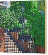 Vines Over Gate Wood Print