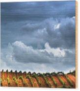 Vineyard 01 Wood Print
