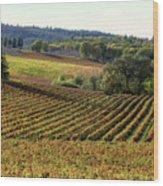Vineyard 22 Wood Print