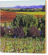 Vineyard 5 Wood Print