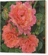 Vineyard Flowers  Wood Print