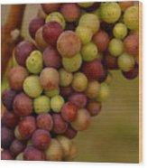 Vineyard Grapes Wood Print