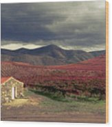Vineyard House Wood Print