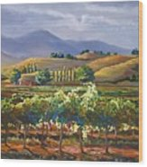 Vineyard In California Wood Print