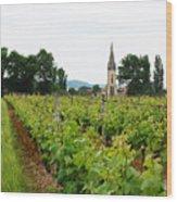 Vineyard In France Wood Print