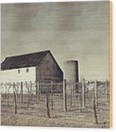 Vineyard In Winter Wood Print