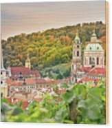 Vineyard Of Prague Wood Print