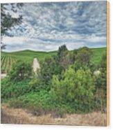 Vineyard On Cloudy Day Wood Print