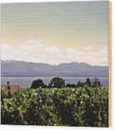 Vineyard On Lake Geneva Wood Print