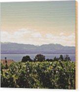 Vineyard On Lake Geneva Wood Print