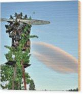 Vineyard Propeller 2 Wood Print